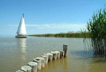 Segelschiff läuft ein