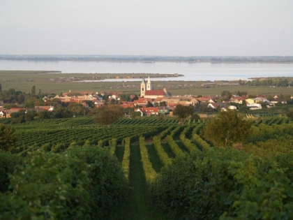 Neusiedler See 09